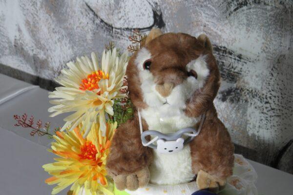 Windeltorte Gr. L  Eichhörnchen  neutral Junge oder Mädchen  Unikat  One-of-One 2