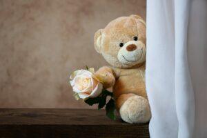 rose, teddy bear, teddy