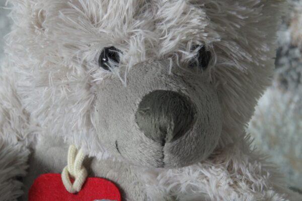 Windeltorte Teddy Gustav 7
